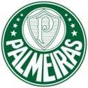 Palmeiras futebol basquete