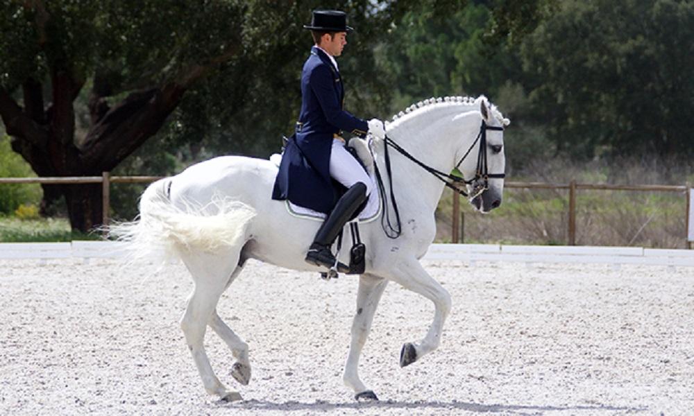 Com nova montaria, João Victor Oliva é campeão em Portugal