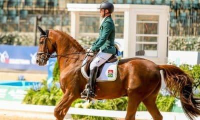 Ilustração Rodolpho Riskalla é prata nos Jogos Equestres Mundiais
