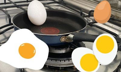 A importância do consumo do ovo para os atletas de alto rendimento
