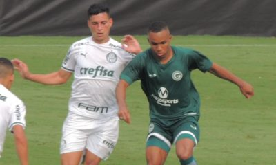 Palmeiras Brasileiro Sub-20 Sport