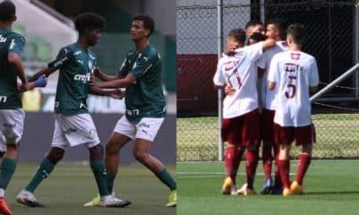 palmeiras fluminense brasileiro futebol
