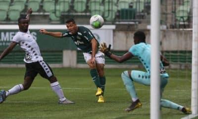 Botafogo Palmeiras Campeonato Brasileiro Sub-20 de futebol masculino