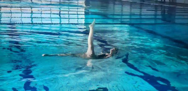 seleção brasileira de nado artístico convocadas categorias